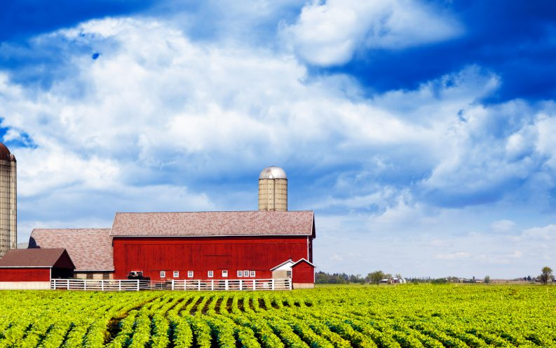 Iowa farmland barn