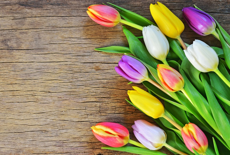 6 Tips for Buying Cheap Mother's Day Flowers | GOBankingRates