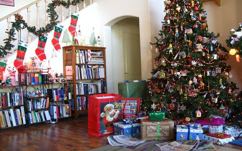 christmas tree rental