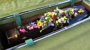 save burial plots 2