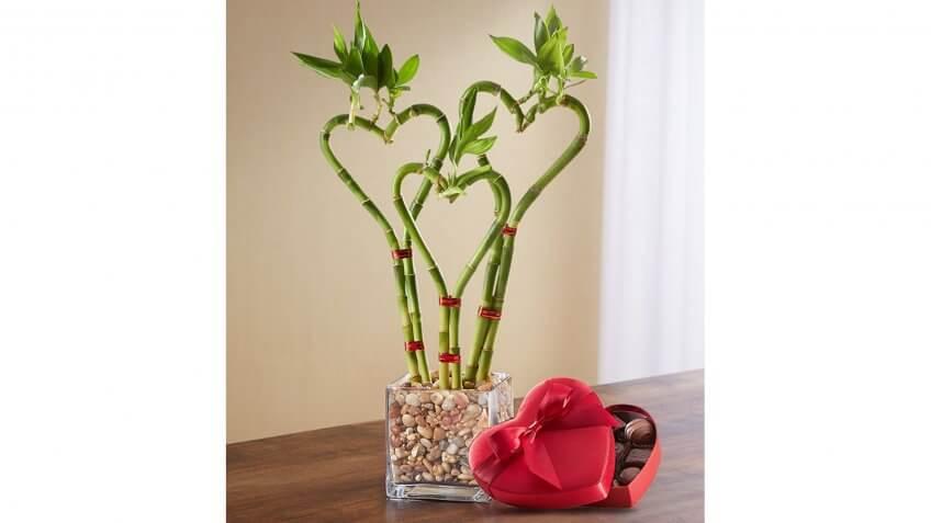 bamboo heart bouquet