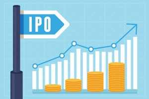 TransUnion's IPO