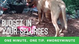 budget in splurges