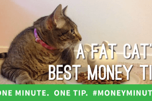 What Cats Can Teach You About Saving Money