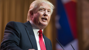 6 Things Donald Trump Says You Should Do With Your Money in 2015