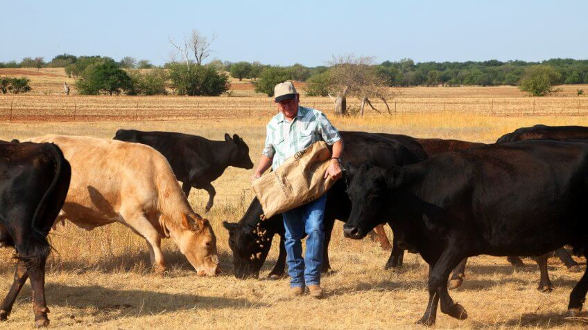 Oklahoma farmer or rancher