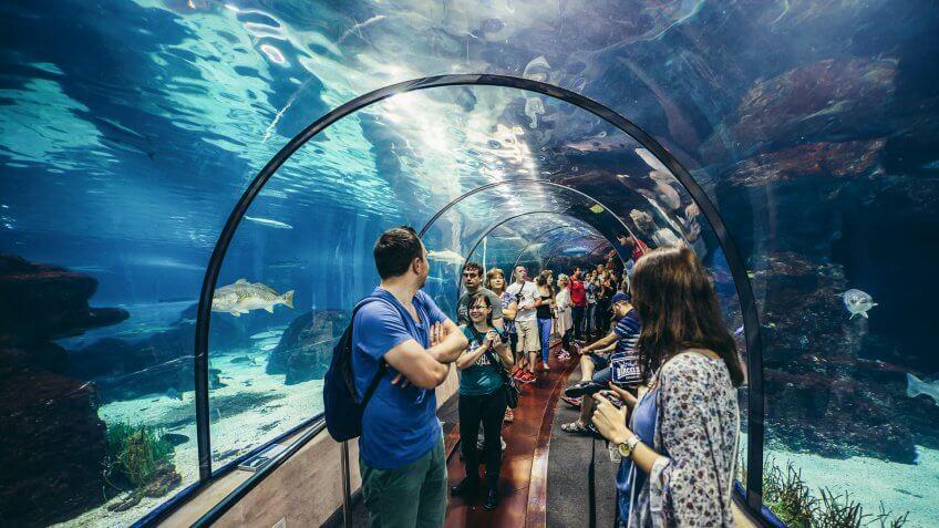 L'Aquarium de Barcelona Spain