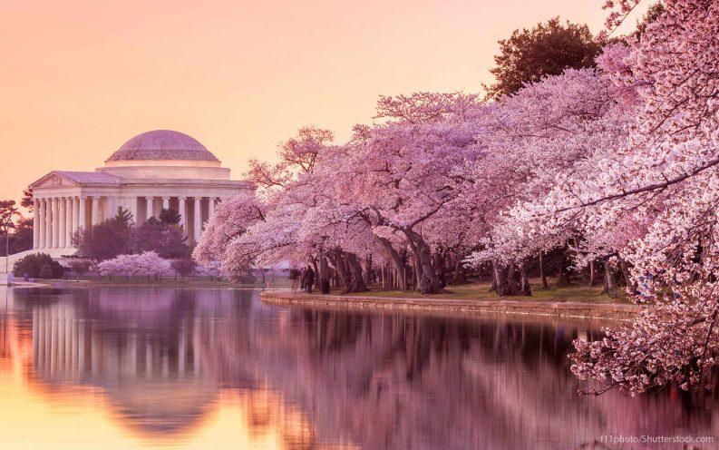 Washington D.C. travel, tour monuments