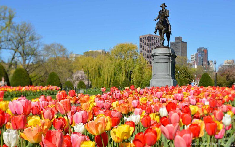 financial deal breaker Massachusetts