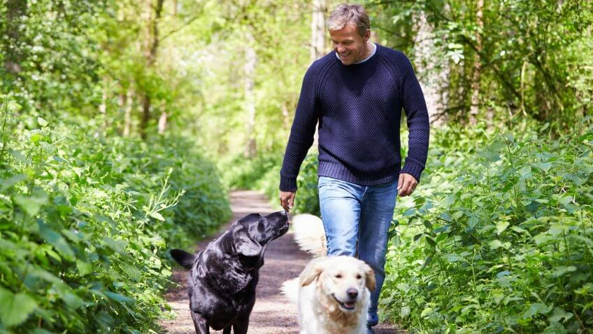 man walking his two dogs