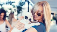 National Puppy Day: 15 Affordable Ways to Spoil Your Dog