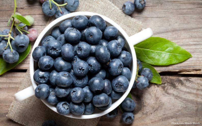Maine Blueberry Tax