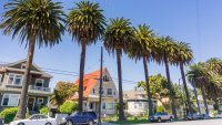 One Notoriously Expensive Area Tops List of Hottest Real Estate Markets in the US