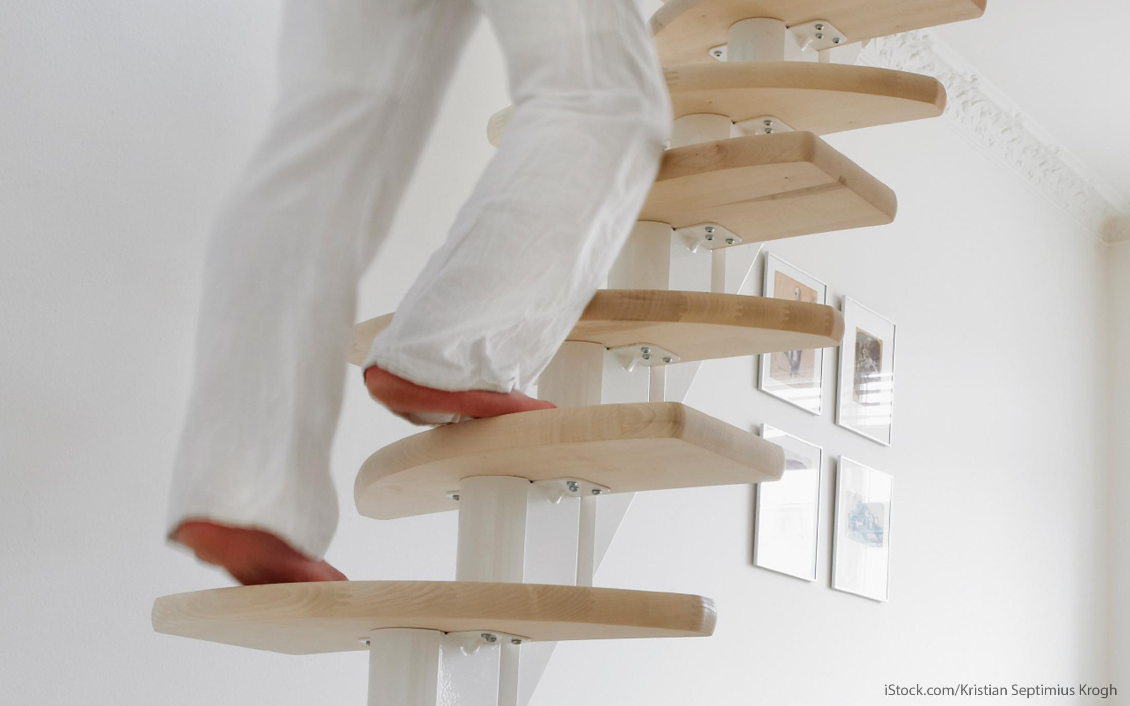 tiny ladders in tiny homes