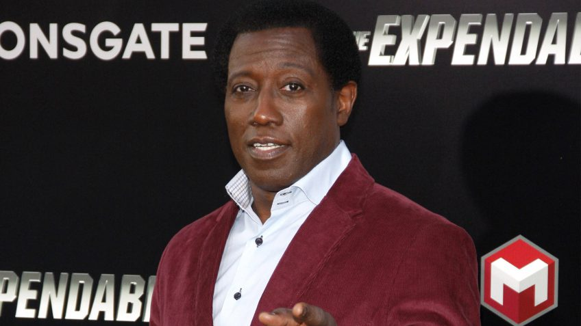 Wesley Snipes taxes