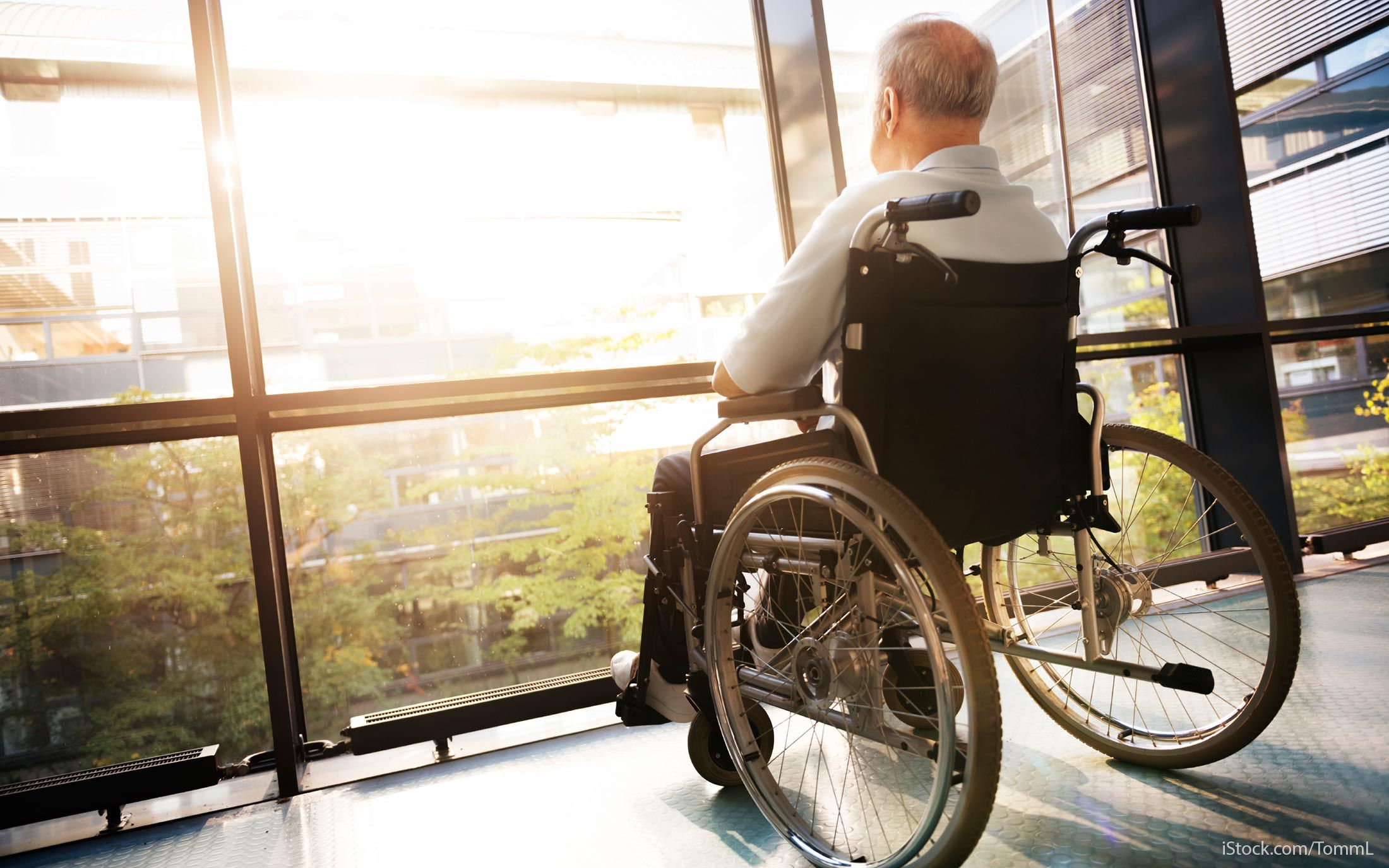 handicap accessible tiny homes