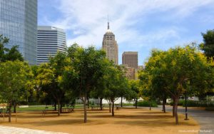 How to Choose the Right Oklahoma City CD for Your Situation