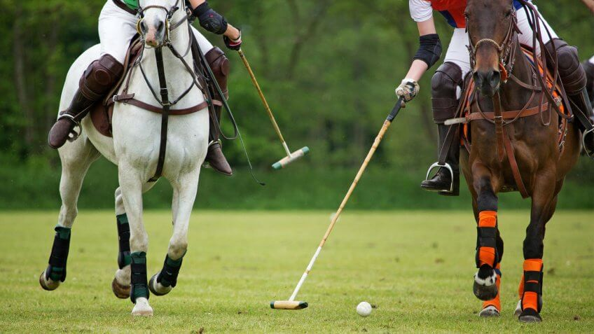 Horse, Netherlands, Polo, Polo players challenging for the ball - Stock image, Sport, Summer