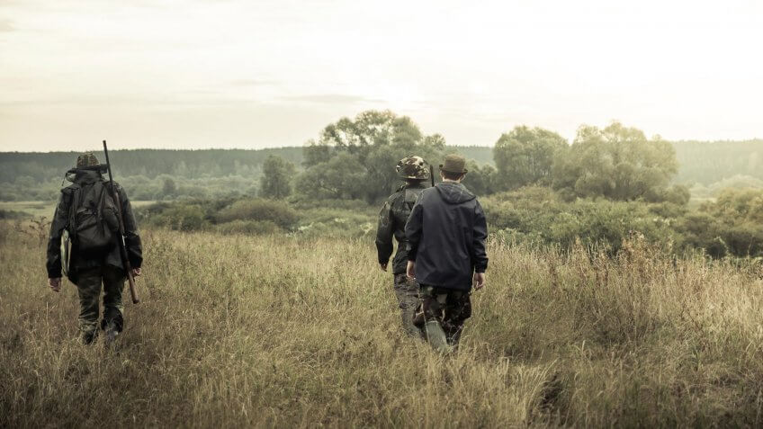 Bird Hunting, Go Away, Hiking, Hunters going on rural field at sunrise during hunting season - , Season
