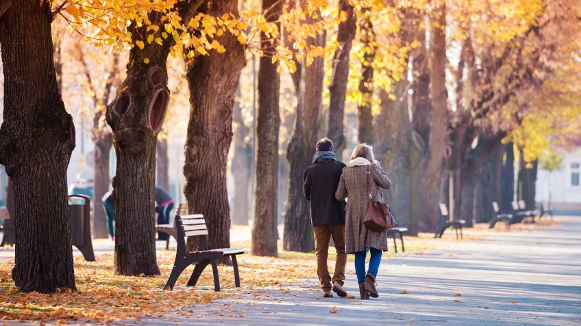 couple walking through a park together