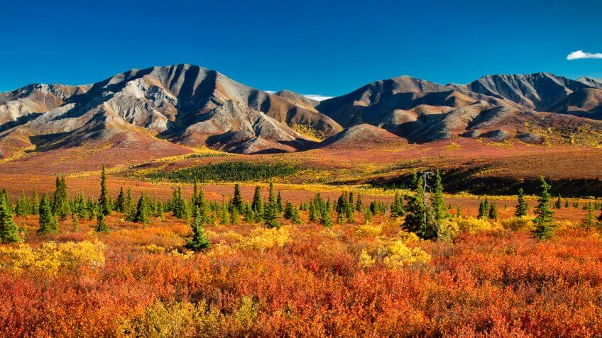 denali national park latino personals Craigslist provides local classifieds and forums for jobs, housing, for sale, services, local community, and events.