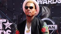 Has Chris Brown's Net Worth Recovered From Rihanna Breakup and Other Controversies?