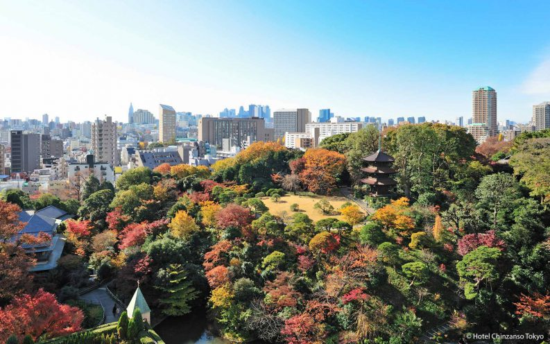7_Autumn_at_Hotel_Chinzanso_Tokyo.jpg