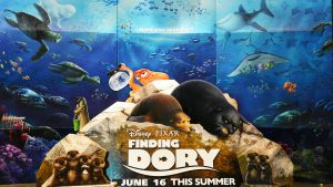 'Finding Dory' Movie Cast: Ellen DeGeneres Net Worth, Ed O'Neill Net Worth and More
