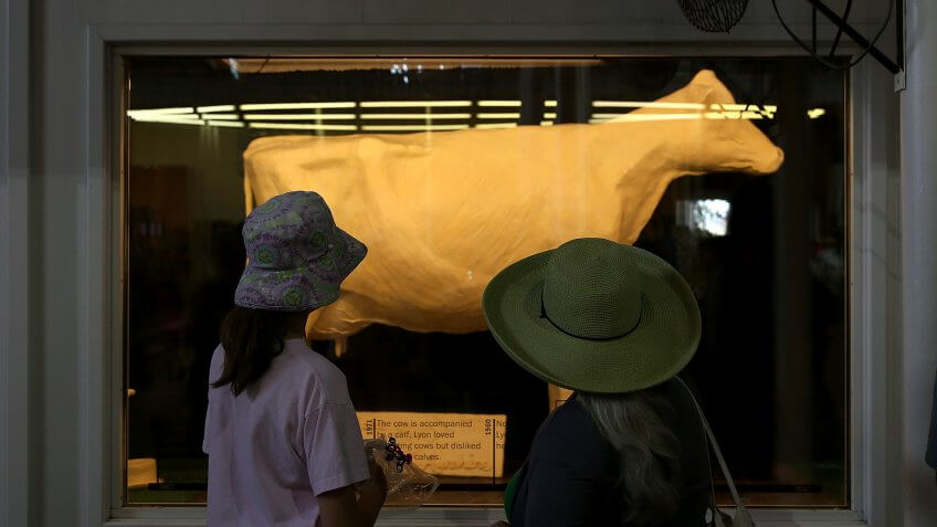 2015 in Des Moines, Des Moines, IA - AUGUST 13:  Fairgoers look at the Butter Cow, Iowa. The Iowa State Fair is one of the oldest and largest agric, a cow made of butter, attracts over a million visitors each year. The fair runs throug, during the Iowa State Fair on August 13, the largest event in Iowa
