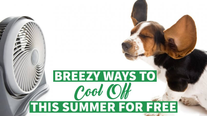 8 Breezy Ways to Cool Off This Summer for Free