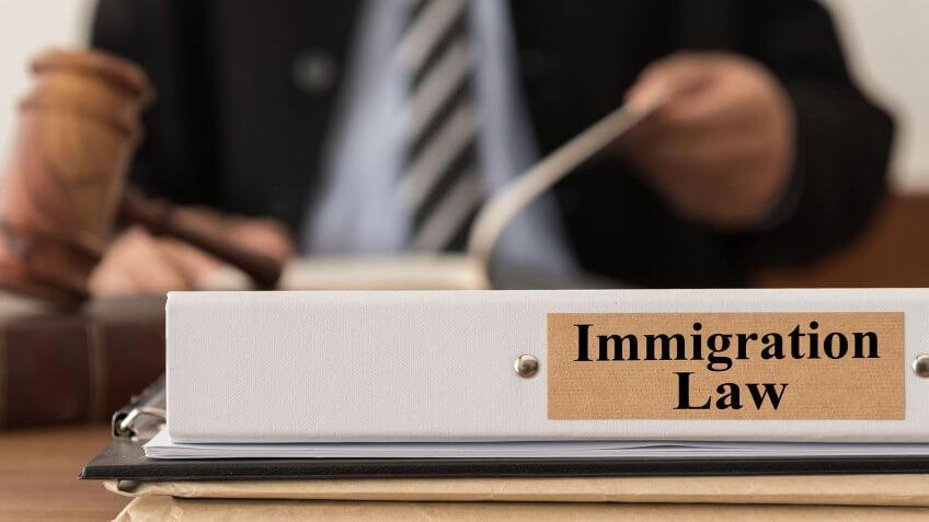 immigration law binder