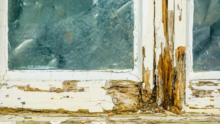 house frame replacement costs