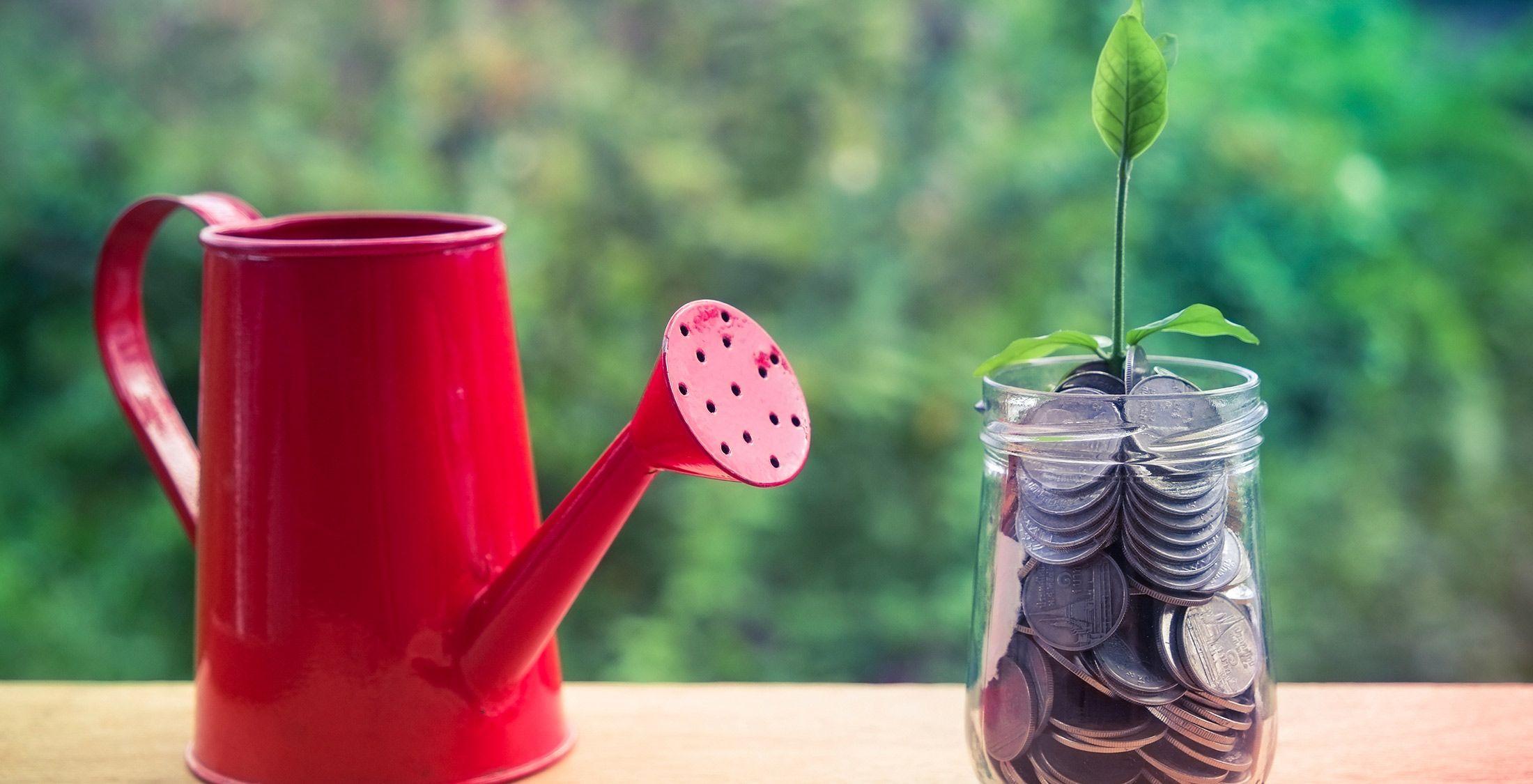frugal secret to wealth