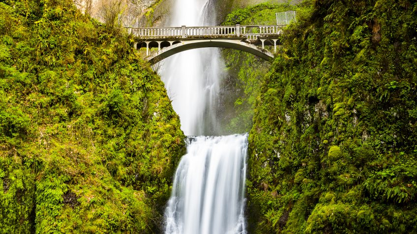 Oregon paying off debt