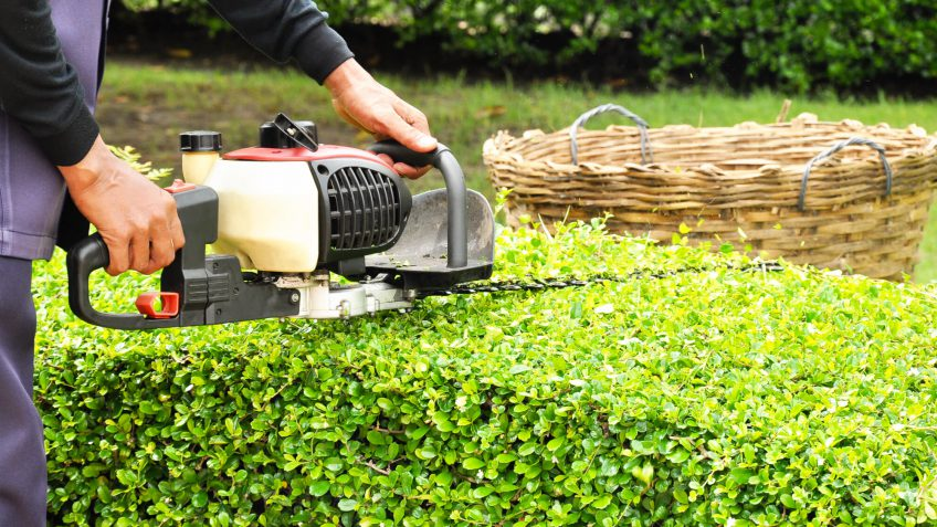 landscaping maintenance costs