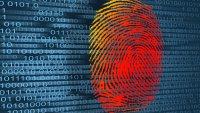 4 Ways to Report Identity Theft