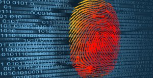 4 Ways to Report Identity Theft