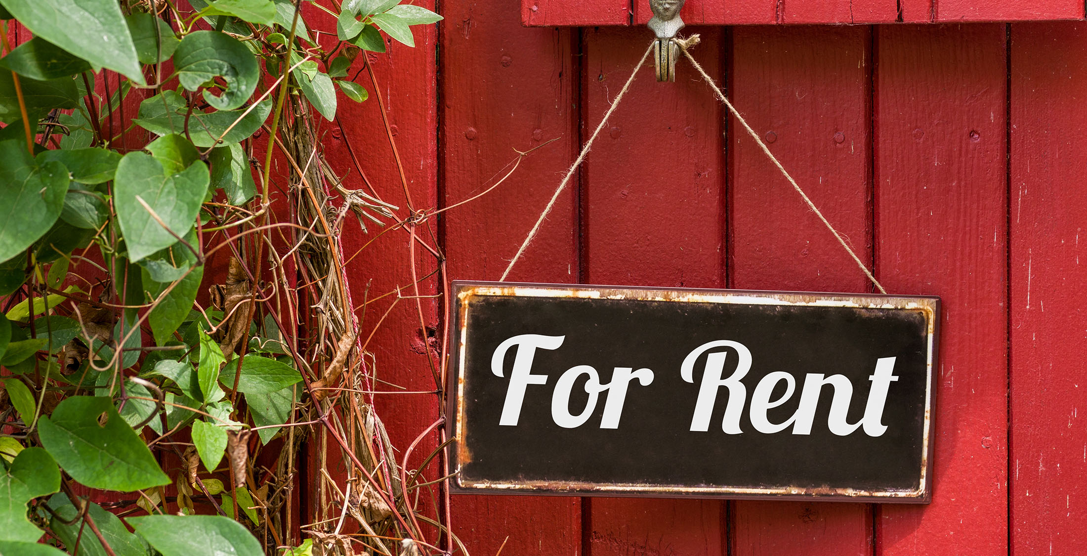 How can I find assistance with paying my rent?
