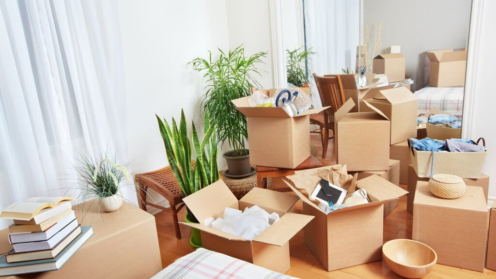 room crammed with moving boxes filled with assorted household items