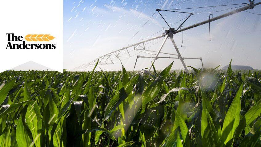 cornfield getting watered