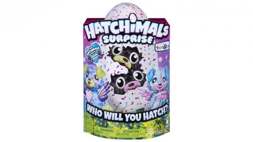 Hatchimals Surprise.