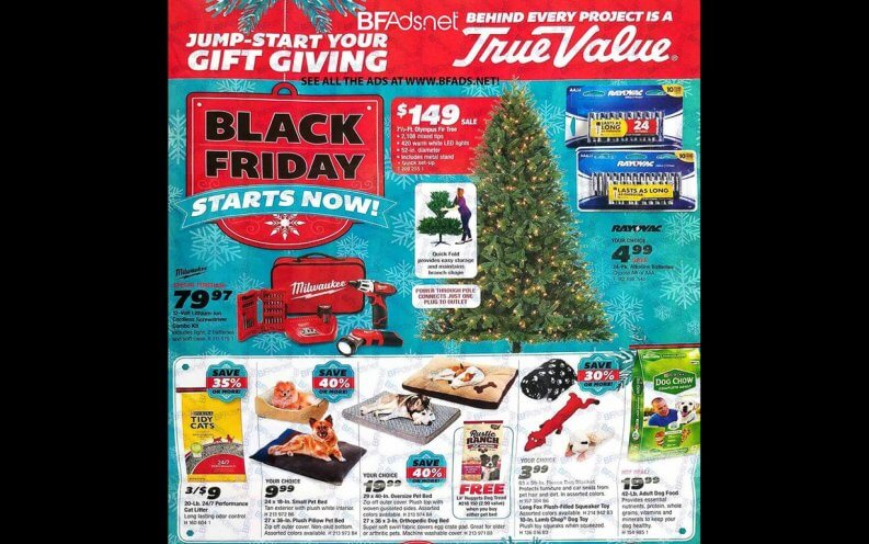 True Value Black Friday coupon