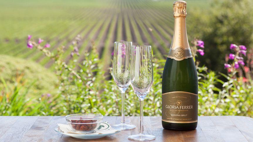 Sparkling Wines, champagne, gloria ferrer, paige green, sonoma