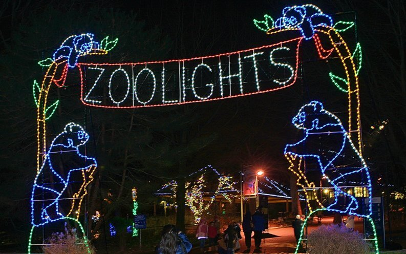 ZooLights at The Smithsonian's National Zoo