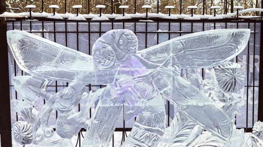 ice sculpture of a winged insect
