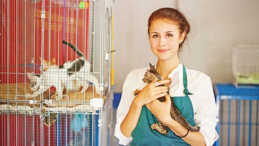Animal Care Service Worker