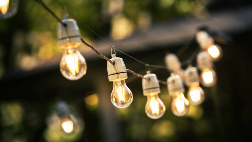 string light bulbs in a garden