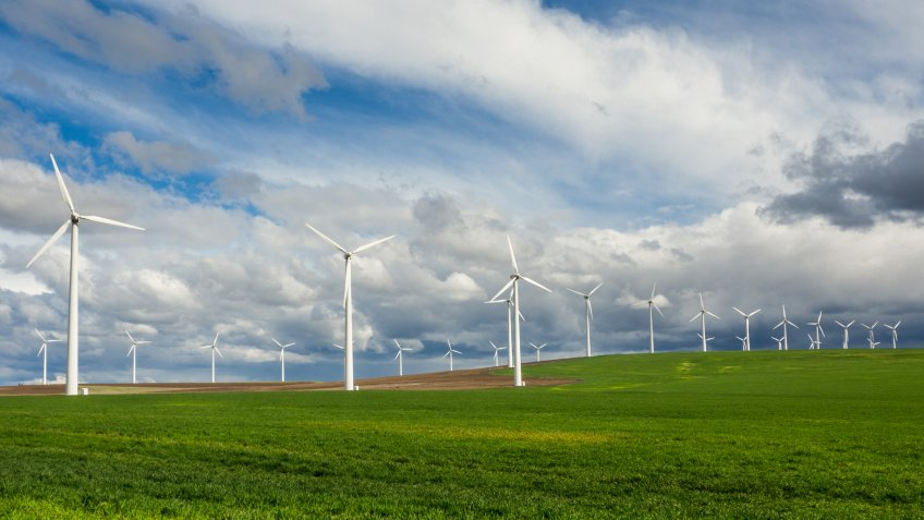 Rows of wind turbines line a grassy field in northern Oregon.