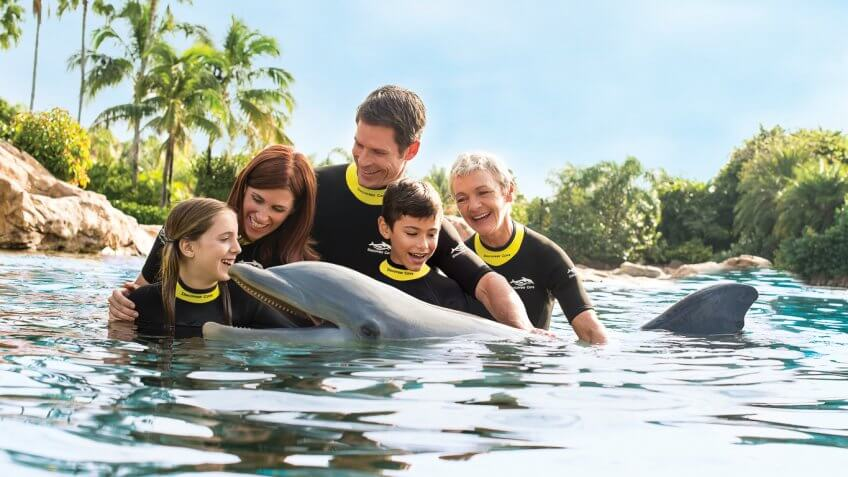 Discovery Cove family with dolphins