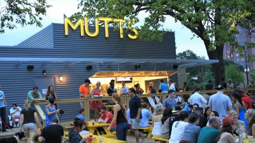 Mutts Canine Cantina in Dallas Texas